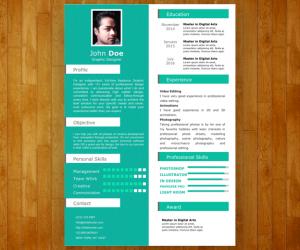 Single Slide Resume Template for PowerPoint