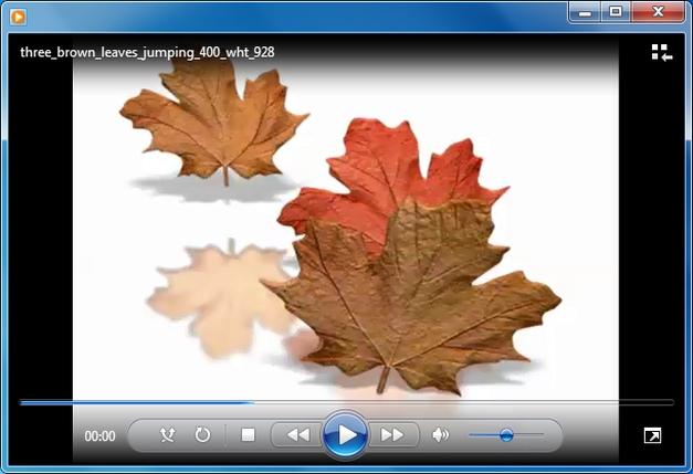Falling leaves animation