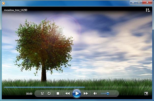 Meadow tree video animation