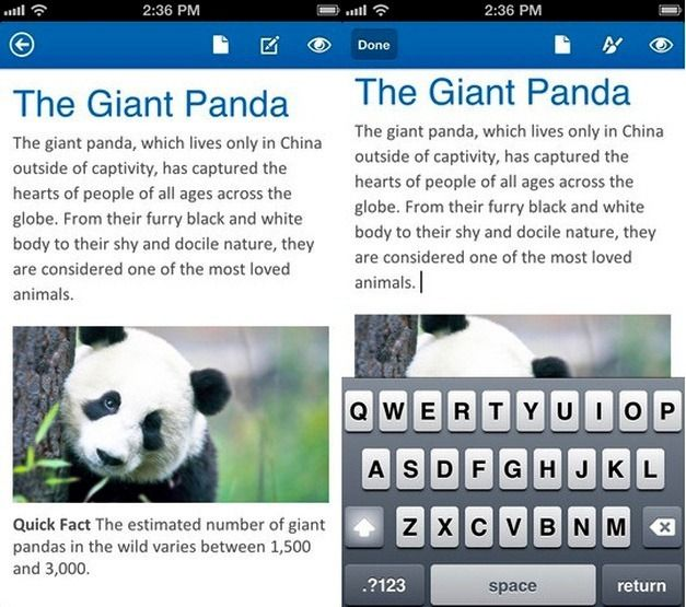 Office Mobile MS Word Features