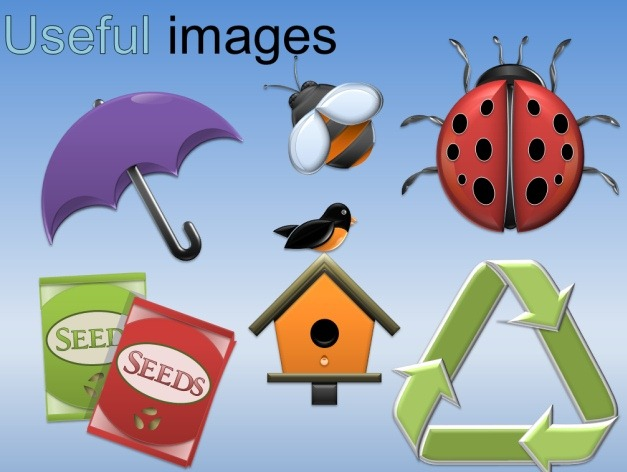 spring clipart images